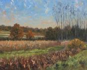 Autumn Colours, East Sussex
