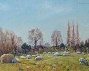 Expectant ewes, Sandhurst