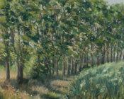 Line of Poplars, New House Farm