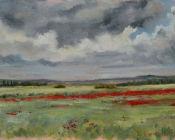 Poppies, Romney Marsh