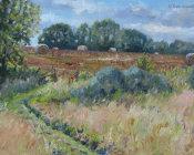 September Hay Bales, Hawkhurst