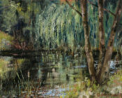 Dingleden Farm Pond& Willow
