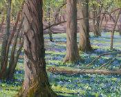 The bluebell woods,Rolvenden