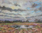 Waterlogged Field,Newenden