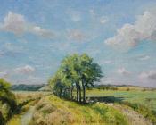 Summer,Romney Marsh