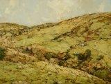 A view down an Antrim glen