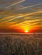 Sunrise over Seadheads