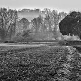 Great Brooksend Farm