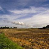A Bright Autumn Day in Suffolk