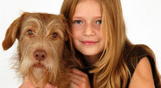 Pet and Family Portraits, The Ditchling Studio, nr Lewes, Sussex