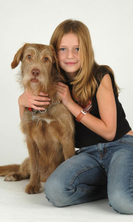 Pet and Family Portrait Photography, The Ditchling Studio, nr Lewes, Sussex