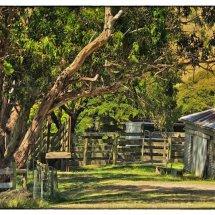Outback Farm