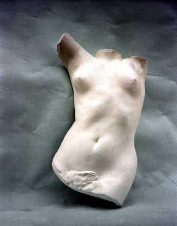 A010 Anatomia Anteriore