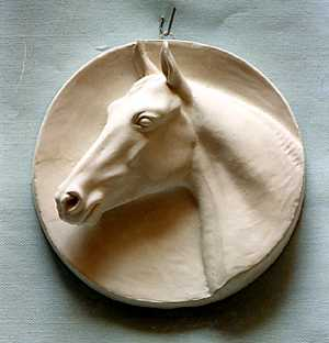 R067  Testa di cavallo