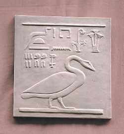 R228     Oca con geroglifici