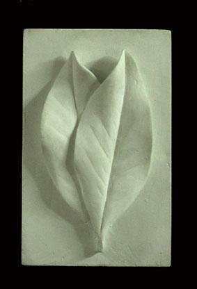R289    Due foglie di magnolia
