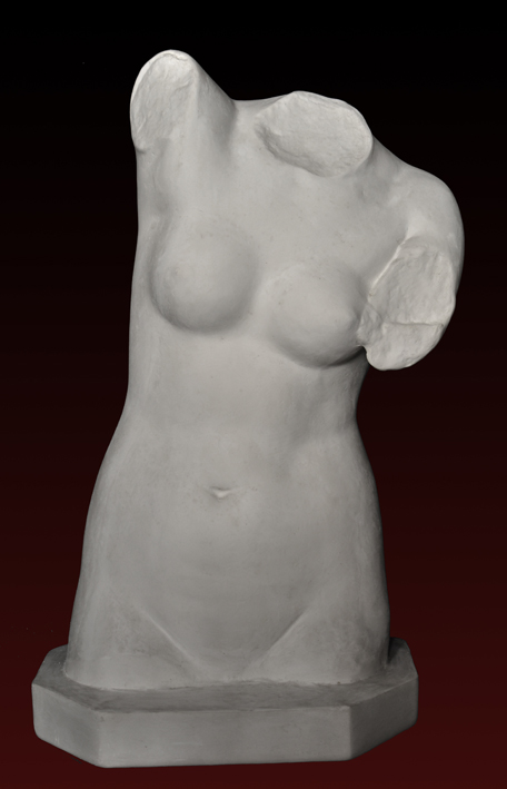 S107 Venere torso
