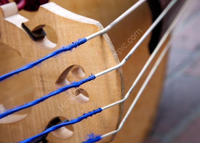 Double Bass