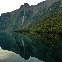 Hall Arm Reflection, Doubtful Sound, Fiordland.