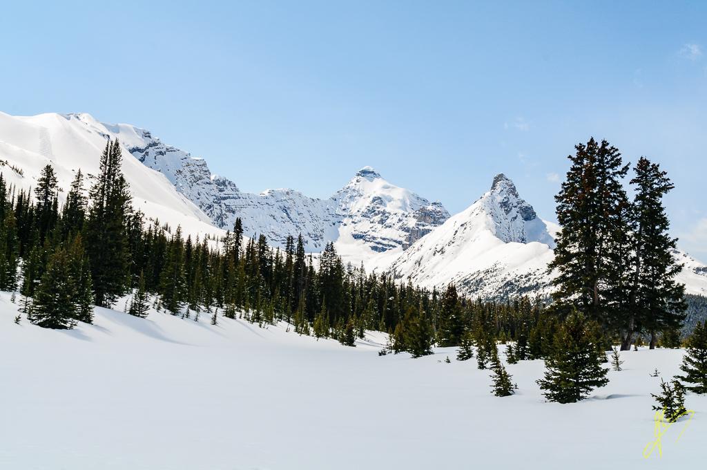 Parker Ridge and Mount Hilda, Banff National Park, Alberta.