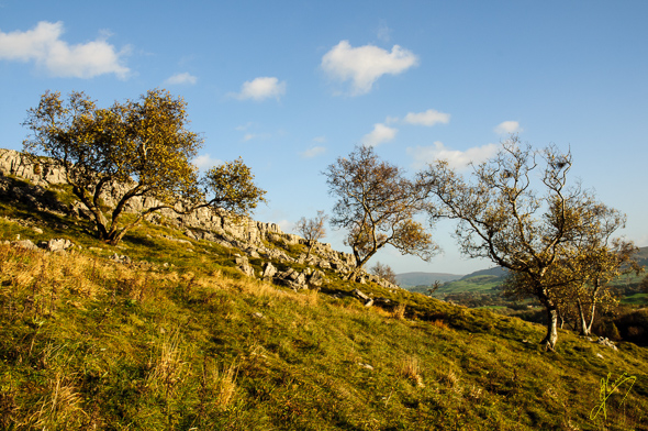 Hill above Grassington.