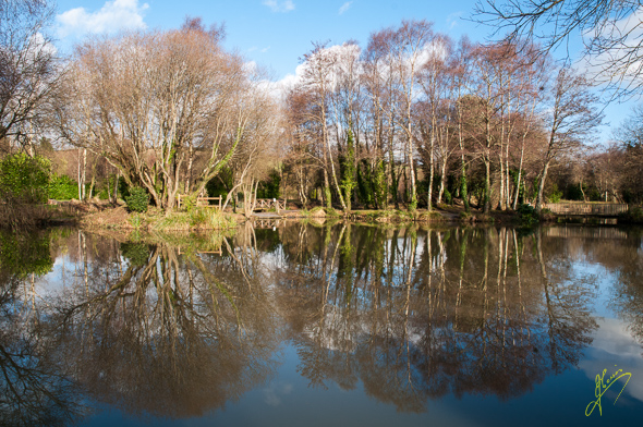 Ashcombe Pool.