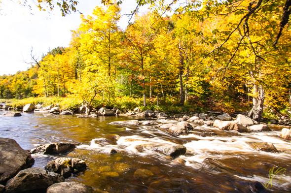 Ausable River.