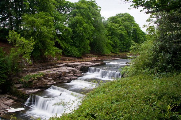 Aysgarth Lower Falls.