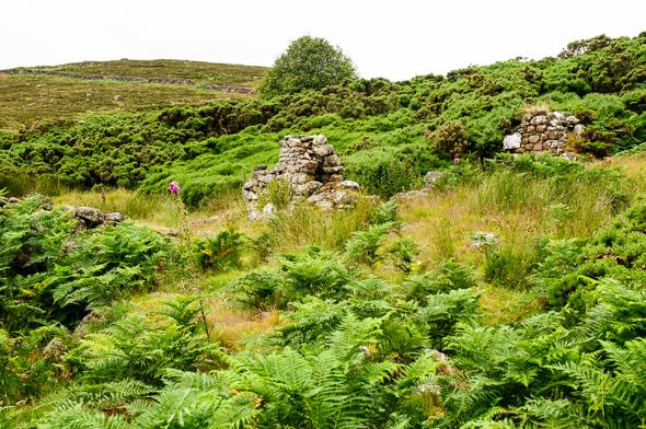 Badbea Village Ruins.