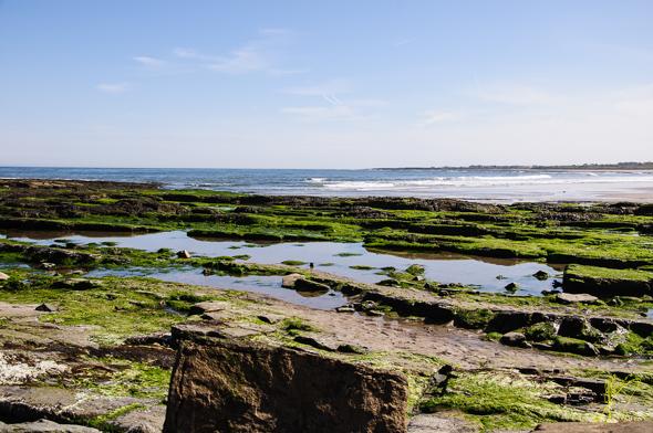 Beadnell Bay.