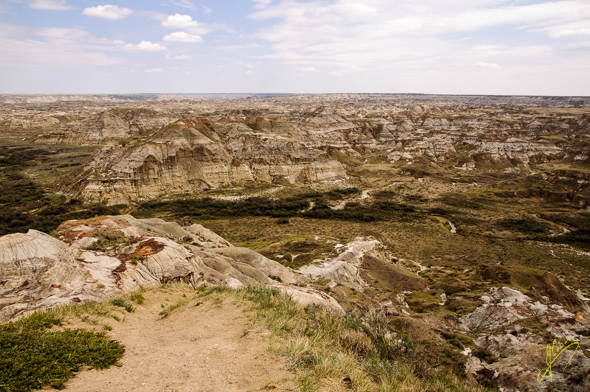 Coulee Point,  Dinosaur Provincial Park.