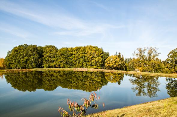 Duggies Pool, Ryton Farm.