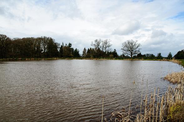 Duggie's Pool, Ryton Farm CL.