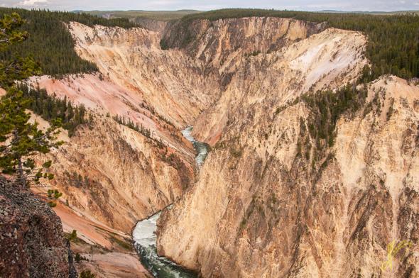Grand Canyon of Yellwstone.