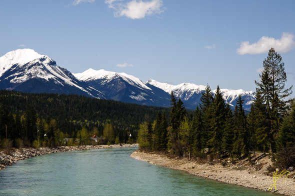 Kicking Horse River, Golden.