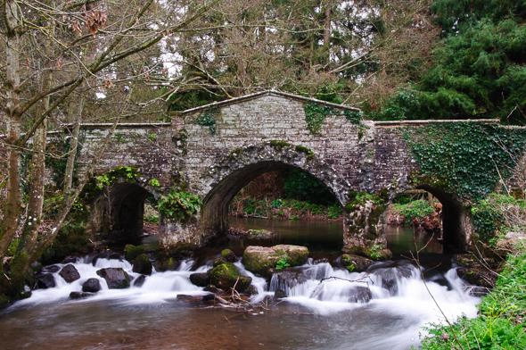 Lawn Bridge and Falls at Dunster.