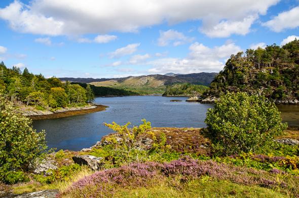 Loch Moidart.