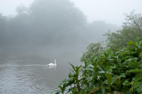 Morning Mist the Ketch Caravan Park.