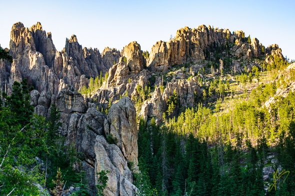 Cathedral Spires, Needles Highway.