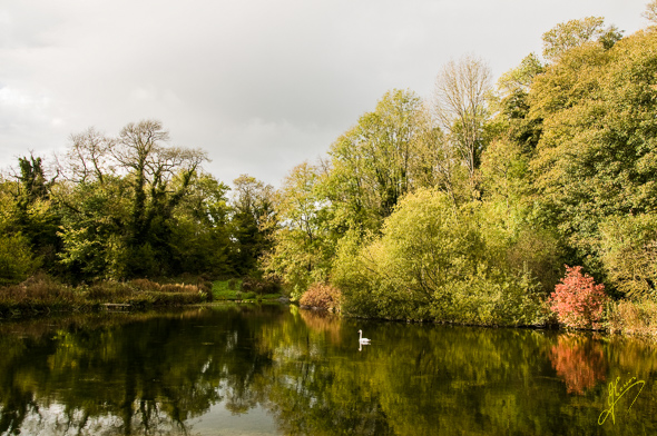 Reflections on the River Lathkill.