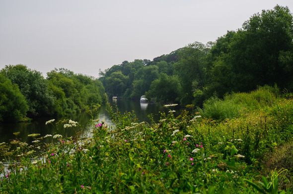 River Ouse at Nether Poppleton.