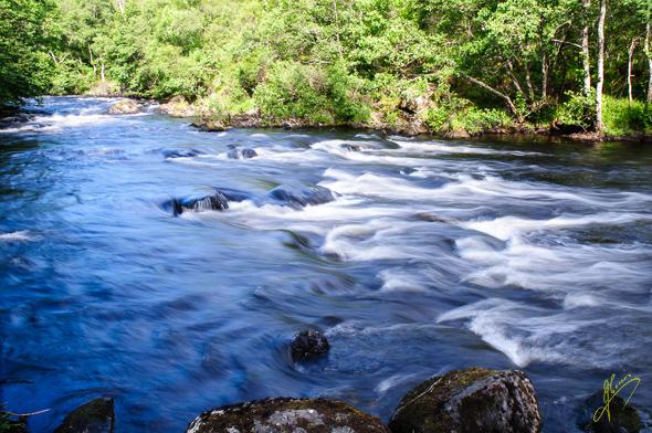 River Shin.