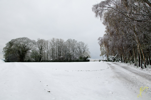 Ryton Farm in the Snow.