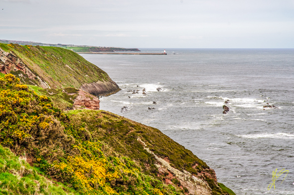 Spittal Coastal Path.