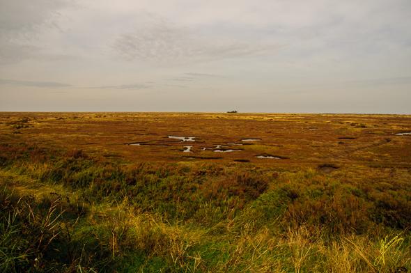 Stiffkey Marshes.