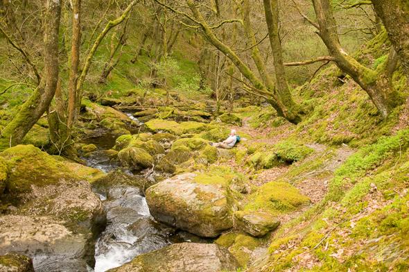 Waterfall Walk Picnic Site.