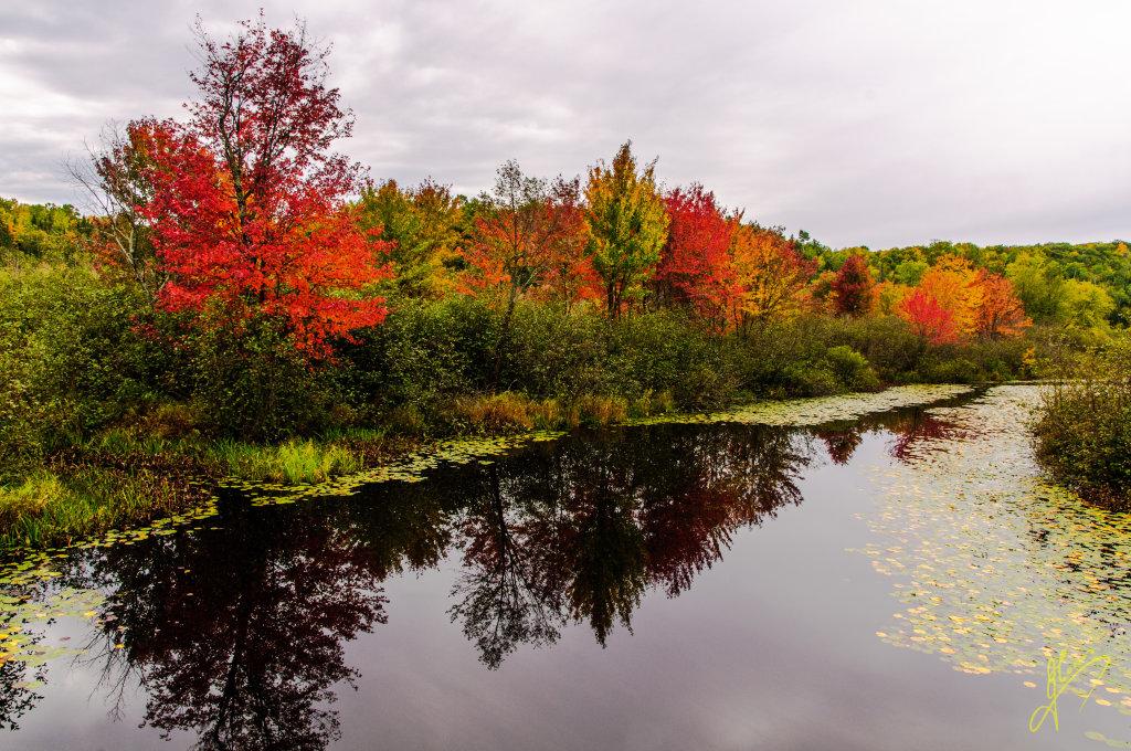 Beudry Creek, Ontario.