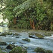 Hatea River, Whangarei.