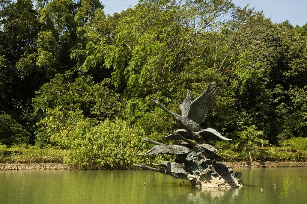 Singapore Botanical Gardens.