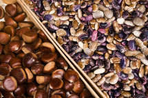 Chesnuts and Pulses